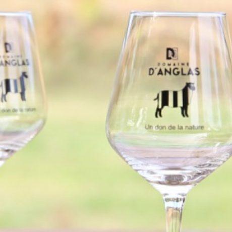 Verre de dégustation gravé du vignoble du Domaine d'Anglas - Achat Vente de vin
