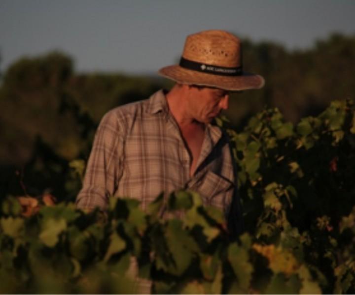 Week end Terroir au cœur du vignoble du Domaine d'Anglas